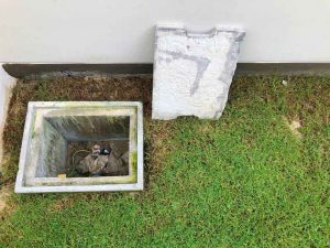 grease trap cleaning in Henderson, NV